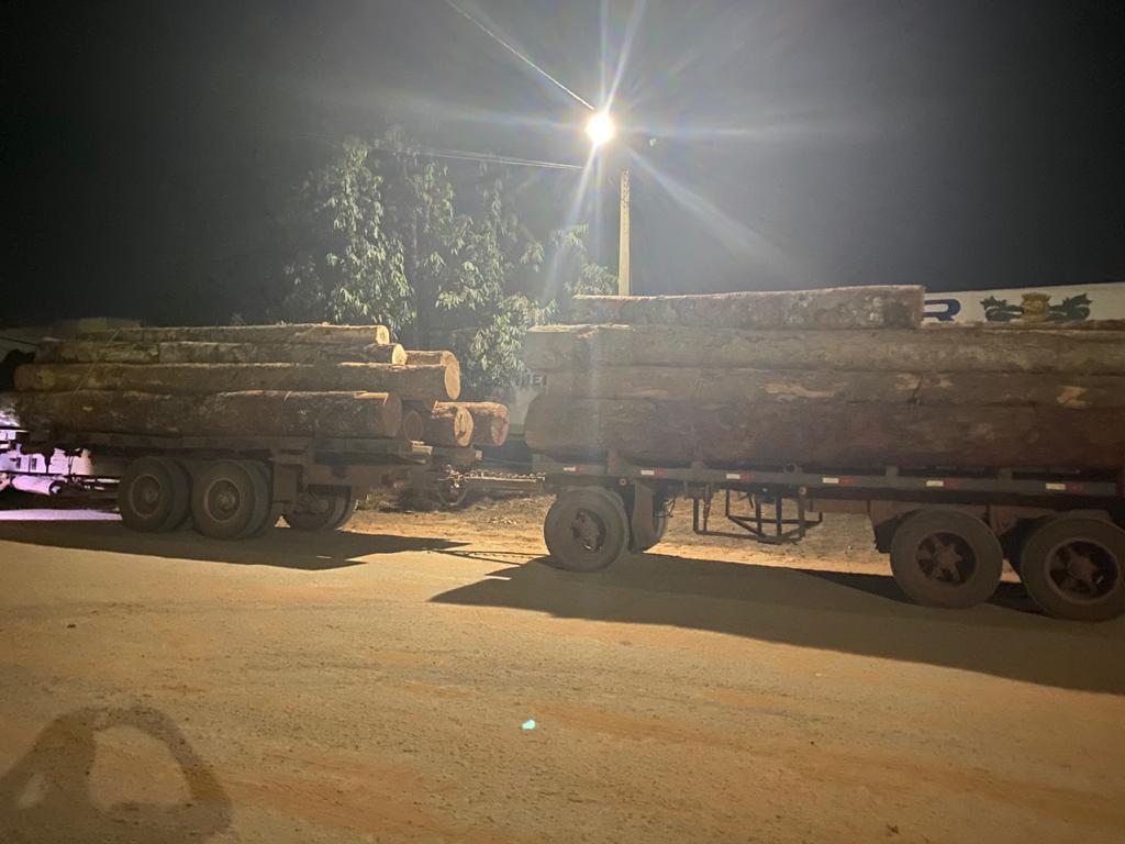 Truckload of illegal logs seized in Comodoro