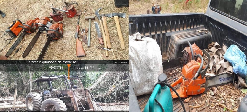 6 arrested for illegal logging in the Vale do Guaporé Indigenous Reserve
